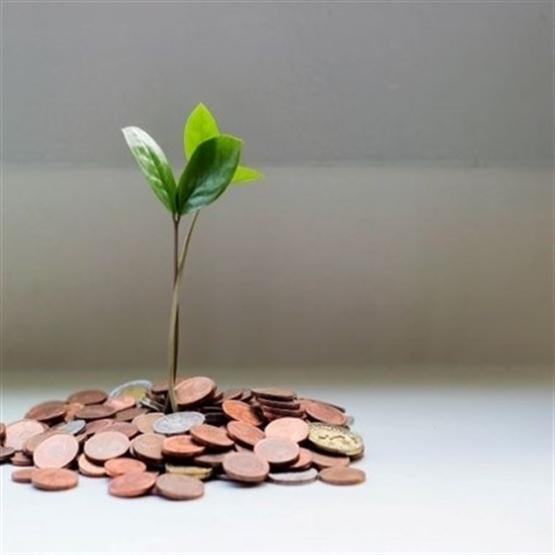 Consultoria Empresarial: Primeiros Passos Para Liberdade Profissional